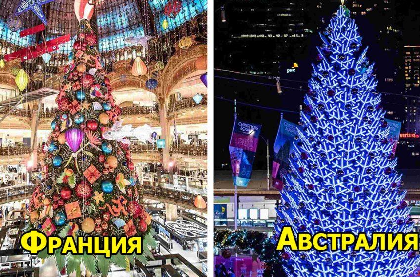 «В ожидании чуда»: как выглядят потрясающие новогодние елки в разных городах мира